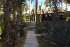 Acre-Cabo-San-Lucas-2017-10