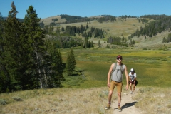 Yellowstone-Summer-2016-72