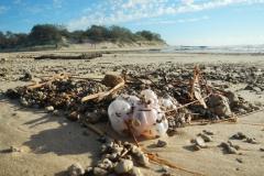 Coolum-Beach-2013-23