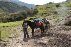 Day-4-Cloud-Forest-Trek-to-Colpa-Lodge-1