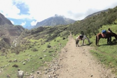 Day-4-Cloud-Forest-Trek-to-Colpa-Lodge-12