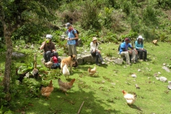 Day-4-Cloud-Forest-Trek-to-Colpa-Lodge-18