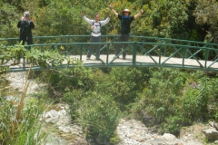Day-4-Cloud-Forest-Trek-to-Colpa-Lodge-26