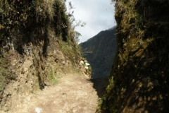 Day-4-Cloud-Forest-Trek-to-Colpa-Lodge-8