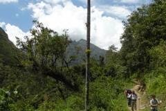 Day-5-Santa-Teresa-River-Valley-to-Lucma-Lodge-18