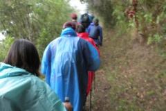 Day-6-Llactapata-Pass-Trek-to-Aguas-Calientes-3