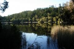 Frazer-Island-2009-54