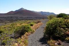 Haleakalā National Park 2011 - 10