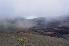 Haleakalā National Park 2011 - 19