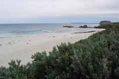 Australia-2006-35