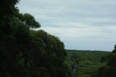 Australia-2006-50