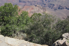 Las-Vegas-The-Grand-Canyon-2012-21