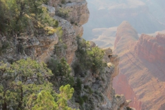 Las-Vegas-The-Grand-Canyon-2012-37