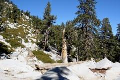 Mount-San-Jacinto-2006-10