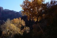 Grand-Canyon-Christmas-2006-32