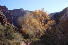 Grand-Canyon-Christmas-2006-34