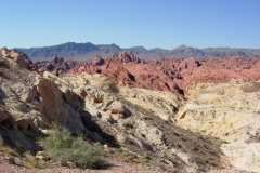 Red-Rock-Canyon-National-Conservation-Area-12