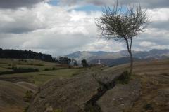 Saksaywaman-2014-34