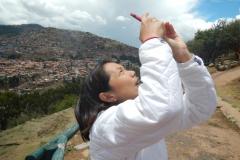 Saksaywaman-2014-8