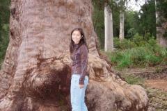 Australia-2006-17