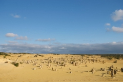 The-Pinnacles-Desert-2010-1