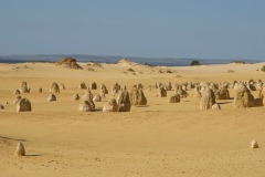 The-Pinnacles-Desert-2010-35