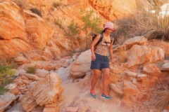 Valley-of-Fire-Nevada-2015-7