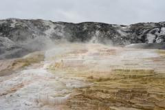 Yellowstone-Fall-2017-1