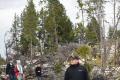 Yellowstone-Fall-2017-15