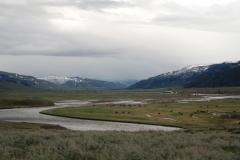 Yellowstone-2008-27