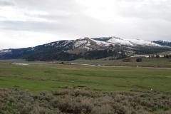Yellowstone-2008-35