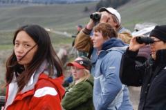 Yellowstone-2008-36