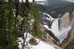 Yellowstone-2008-46