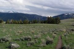 Yellowstone-2008-61