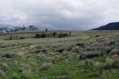 Yellowstone-2008-62