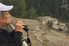 Yellowstone-Summer-2016-10