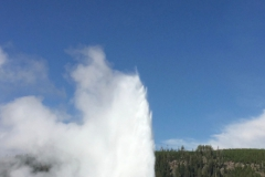 Yellowstone-Summer-2016-23