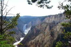 Yellowstone-Summer-2016-87