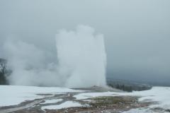 Yellowstone-Winter-2014-19