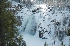 Yellowstone-Winter-2014-32