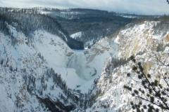 Yellowstone-Winter-2014-34