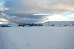 Yellowstone-Winter-2014-37