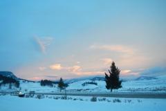 Yellowstone-Winter-2014-41