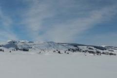 Yellowstone-Winter-2014-42