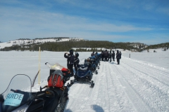 Yellowstone-Winter-2014-46