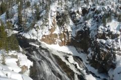 Yellowstone-Winter-2014-49