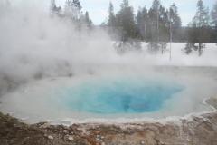 Yellowstone-Winter-2014-55