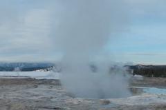 Yellowstone-Winter-2014-58
