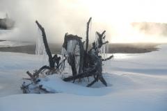 Yellowstone-Winter-2014-62