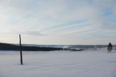 Yellowstone-Winter-2014-63